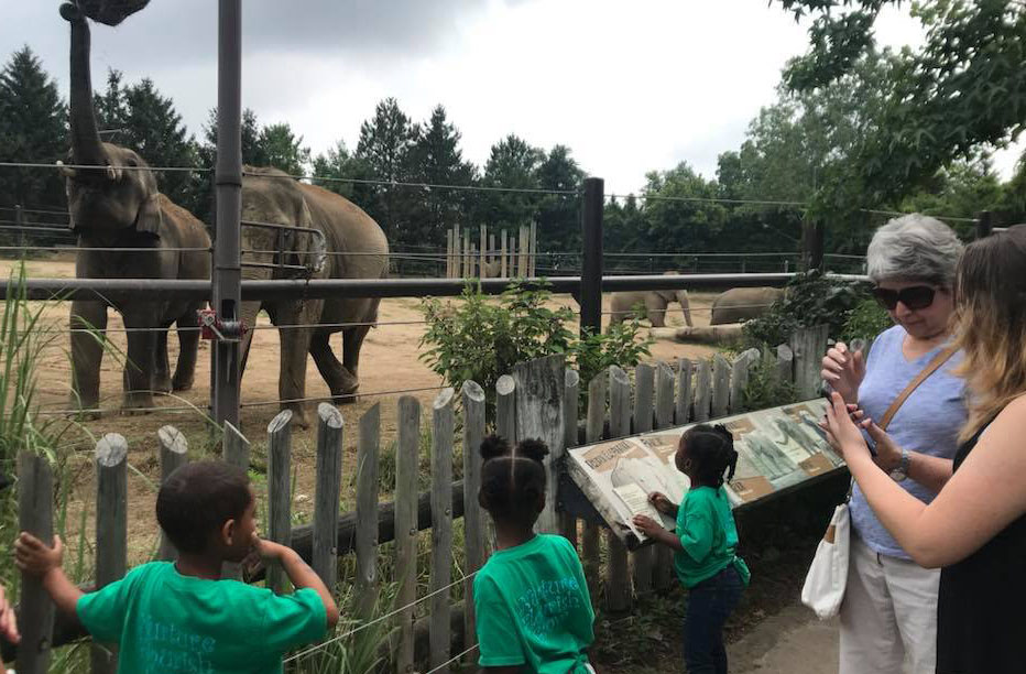 kids visiting the zoo at a Preschool & Daycare Serving Columbus, OH